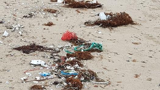 버려진 어망 사이로  보이는 해양 쓰레기들.