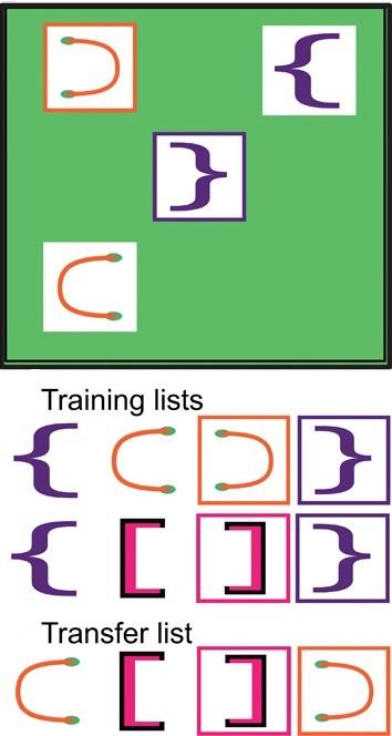 자유롭게 나열된 괄호 기호(맨 위), 학습에 이용된 괄호 기호들.(중간) 응용돼 배열된 괄호 기호들( 아래)