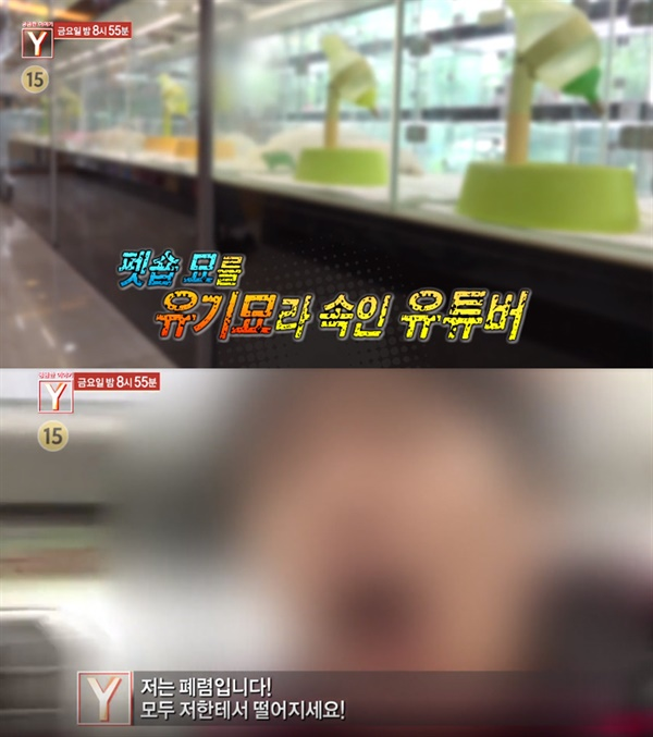 지난 1년 사이 조작 유튜버들을 고발하고 나선 SBS '궁금한 이야기 Y'의 한 장면
