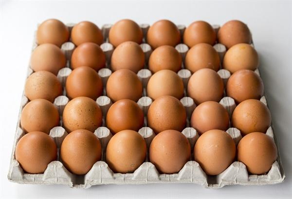 A씨는 지난 3월 23일 배가 고파서 수원의 한 고시원에서 구운 달걀 18개를 훔쳤다