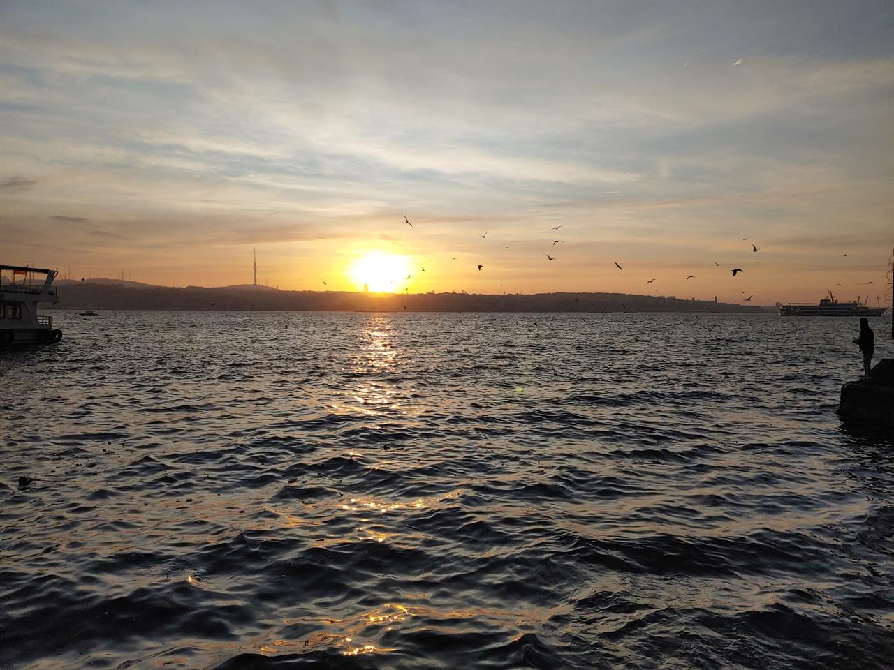 숙소 앞 보스포루스 해협. 갈매기에게 먹이를 주는 남자와 일출.