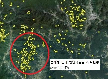 지리산 형제봉 일대 반달가슴곰 서식 현황.