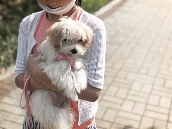 구름이를 안고 있는 딸  직접 키워보며 나와 아이들 모두 강아지에 대한 생각이 많이 바뀌었다.