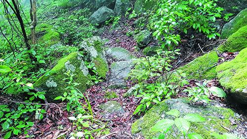 해발 1100미터에 인공으로 만들어진 돌길. 신라 화랑이나 가야인이 만들었을 것으로 추정된다.
