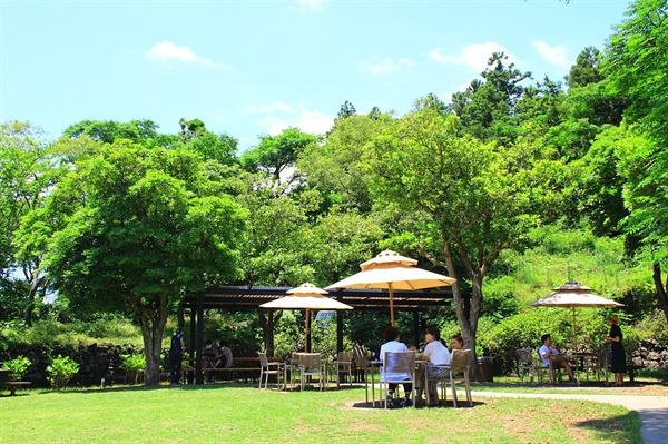 제주 오설록 티 뮤지엄 야외 정원에 파라솔과 그늘막이 설치되어 있는 모습
