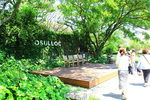 제주 오설록 야외 정원에 설치된 사진 포인트 모습