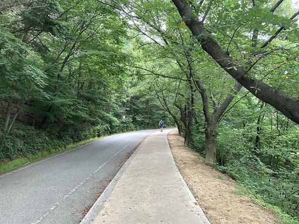 경주 김유신 장군묘 일방도로변에서 혼자서 걷기 운동 하고 있는 시민 모습