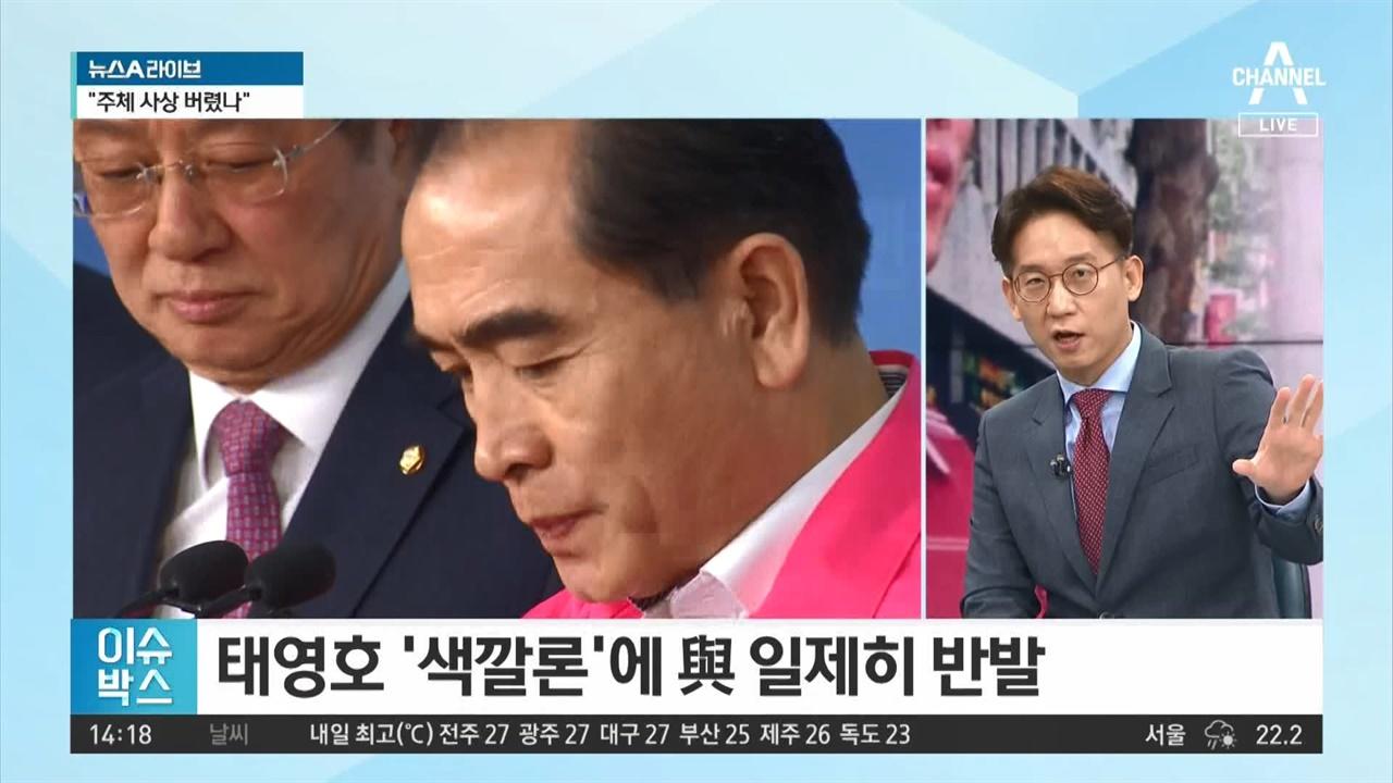 태영호 의원 '색깔론' 비판에 '역색깔론' 꺼내든 김태현 변호사. 채널A <뉴스A 라이브>(7/24)