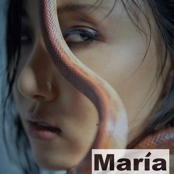 화사 '마리아' 재킷 이미지.