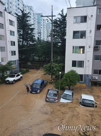 대전 서구 정림동의 한 아파트 주차장 모습(독자 제공)