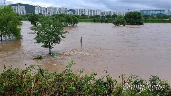 밤새 집중호우가 내린 대전 서구 정림동의 한 아파트 30일 오전 상황. 아파트 옆에 위치한 갑천이 만수위를 보이면서 물이 빠지지 않고 있다.