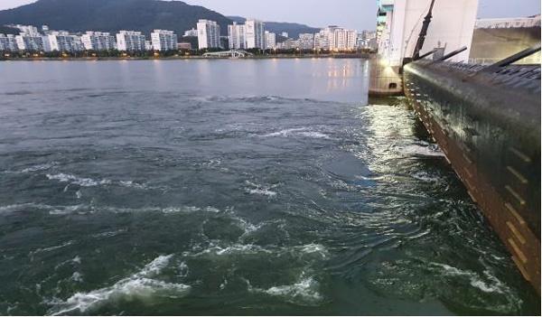 낙동강 하굿둑 수문 저류 해수유입 모습.