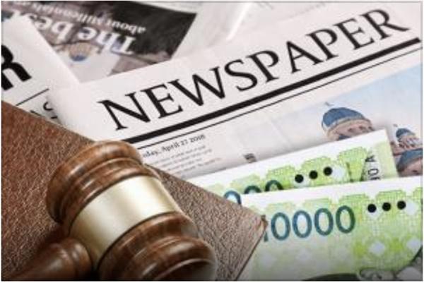언론사 징벌적 손해배상제