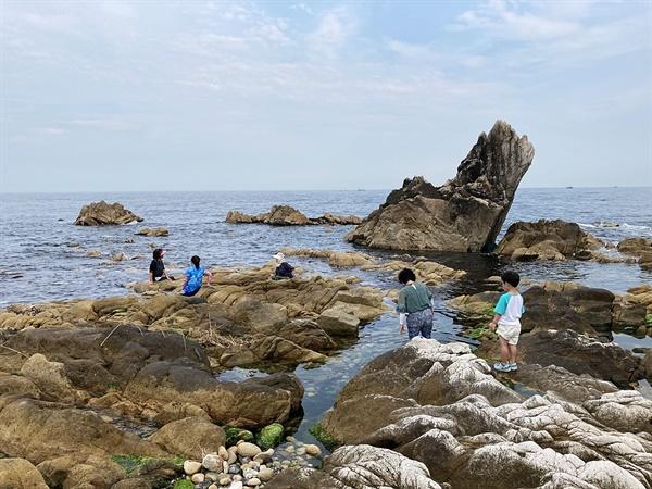 경주 동해안 해파랑길, 동해안로 2574번지 주변 모습