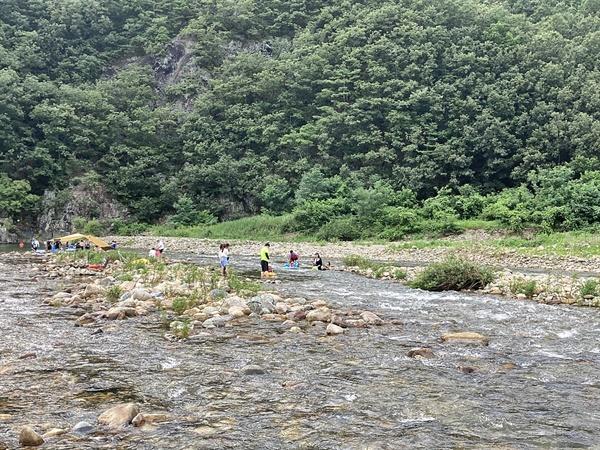 경주 산내 동창천 상류에서 물놀이를 즐기는 피서객들 모습