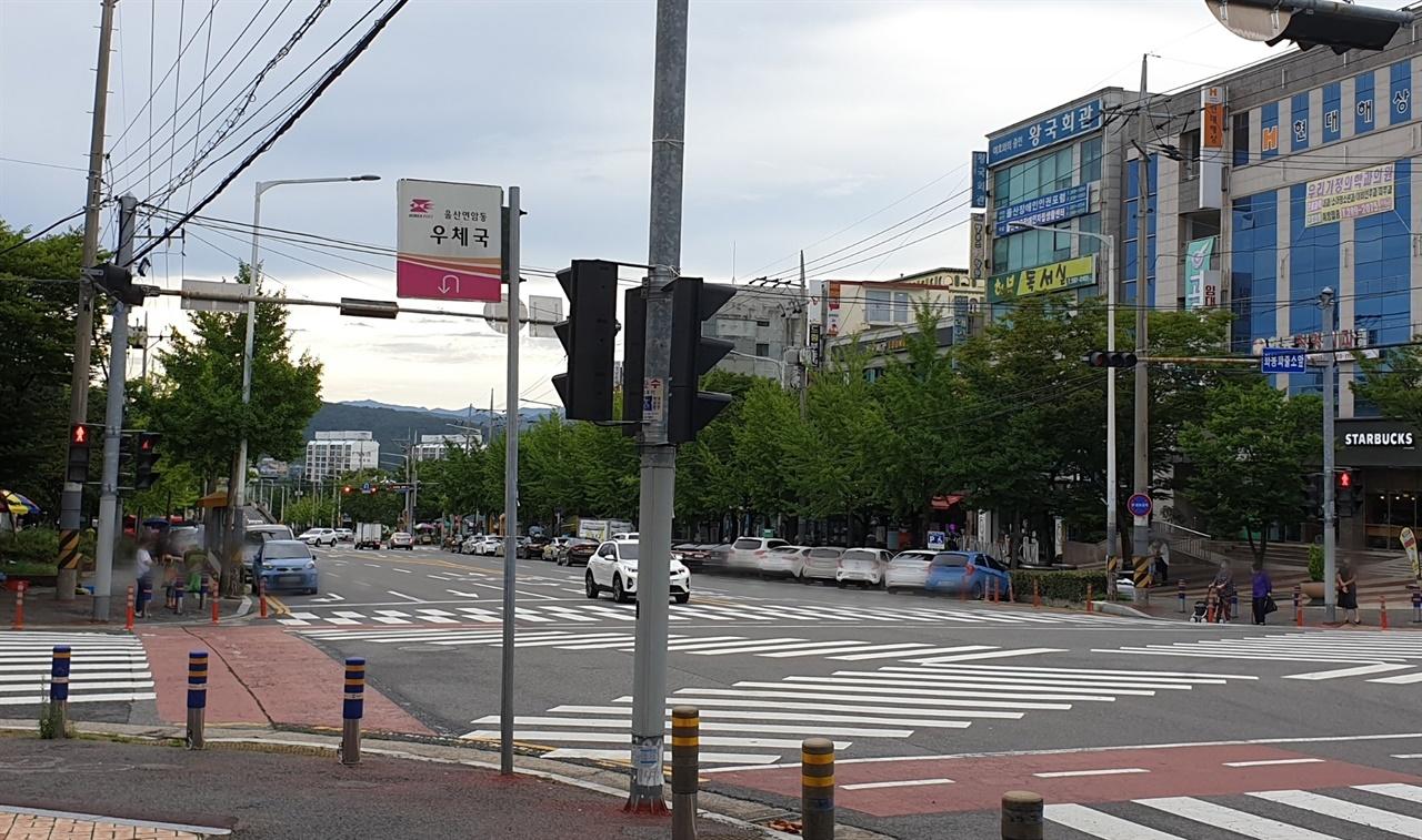 울산 북구 화봉동 일대 모습