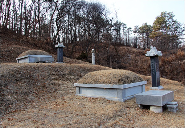 3.1혁명 당시 천안 아우내 만세시위를 주도한 최정철 지사의 묘(위)과 김구응 지사의 묘(아래)