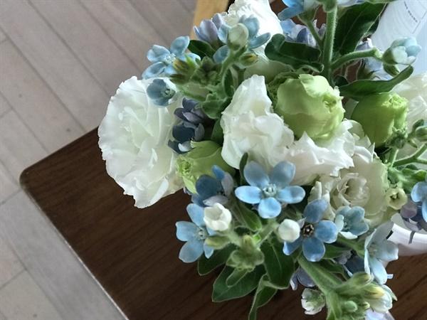 옆집에서 선물한 꽃 선물  이웃과 너무 선을 긋고 살았나 싶은 생각이 든다. 바로 옆집에 이렇게 꽃을 닮은 사람들이 살고 있었는데...
