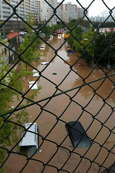 7일 광주 지역에 내린 폭우로 인해 곳곳이 침수된 모습. 광주 북구 문흥동 도로에 세워진 차들이 침수돼 있다.