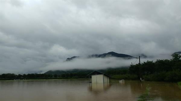 """전남 구례군 상황 구례군에 거주하는 조태용씨는 """"지금도 폭우가 계속되고 있다""""고 전했다."""