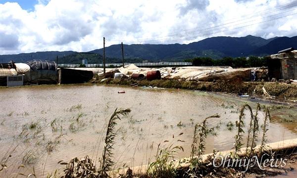 섬진강 범람으로 물에 잠겼다가 빠진 뒤 8월 9일의 구례지역 상황.