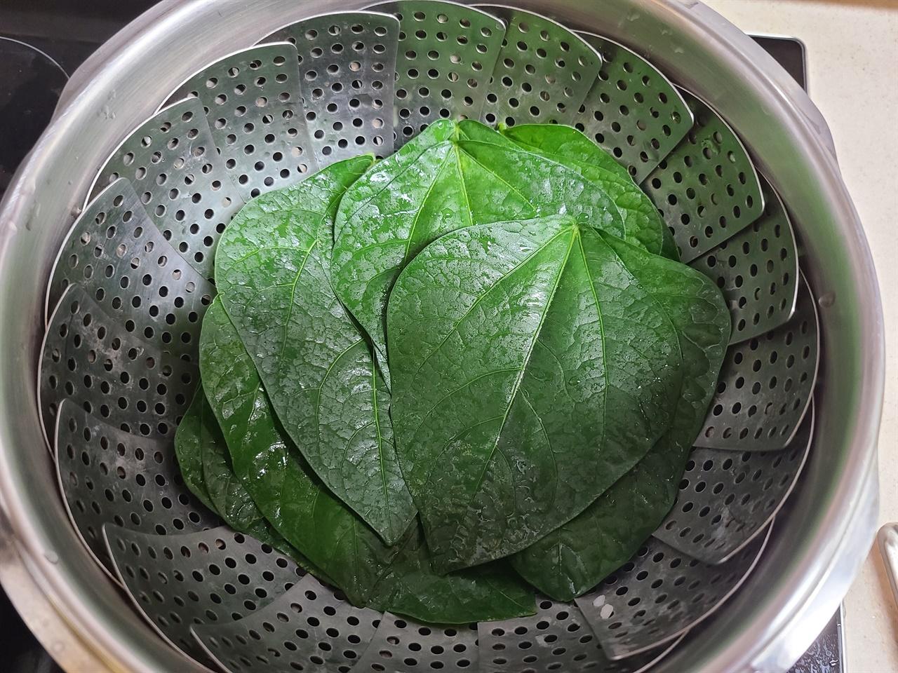 동부콩잎을 쪄서 쌈으로 먹으면 부드러운 맛이 괜찮습니다.