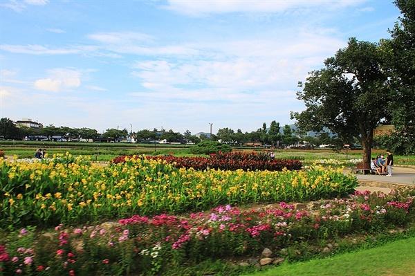 경주 동부사적지대 꽃밭단지 모습