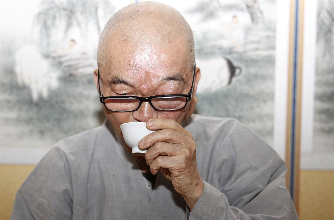 직접 만든 차를 마시는 지허스님. 스님은 참선을 하며 차나무를 재배하고 가꾸는 반선반농을 실천하고 있다.
