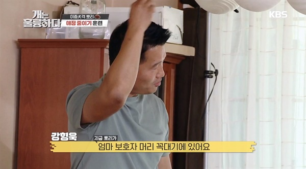 KBS 2TV 예능 프로그램 <개는 훌륭하다>의 한 장면
