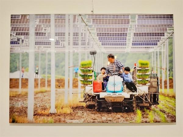 대덕구 법동 대덕에너지카페 내, 에너지전환갤러리 '내일'에 전시된 재생에너지 사진의 모습니다.