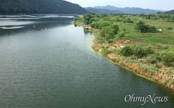 8월 22일 낙동강 합천창녕보 상류에 발생한 녹조.