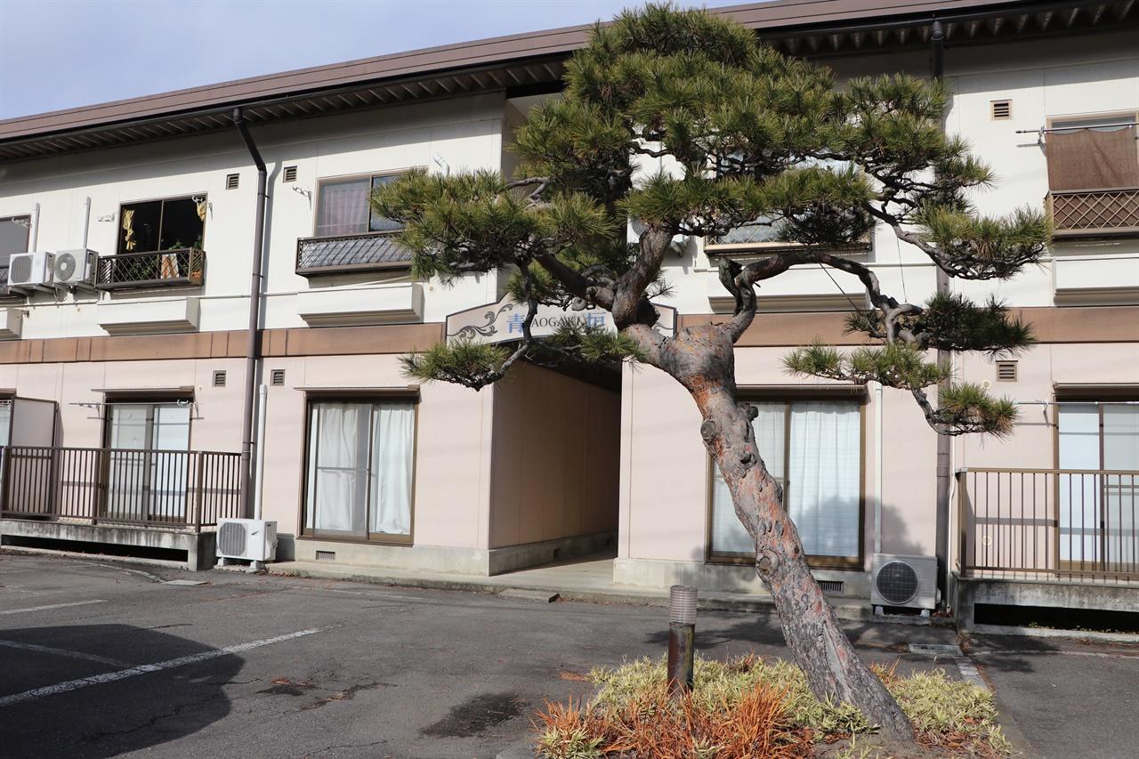 대본영 위안소의 옛터의 소나무 현재 위안소로 사용했던 건물은 허물어지고, 아파트가 들어서 있다. 위안소의 흔적으로는 소나무가 남아있다.