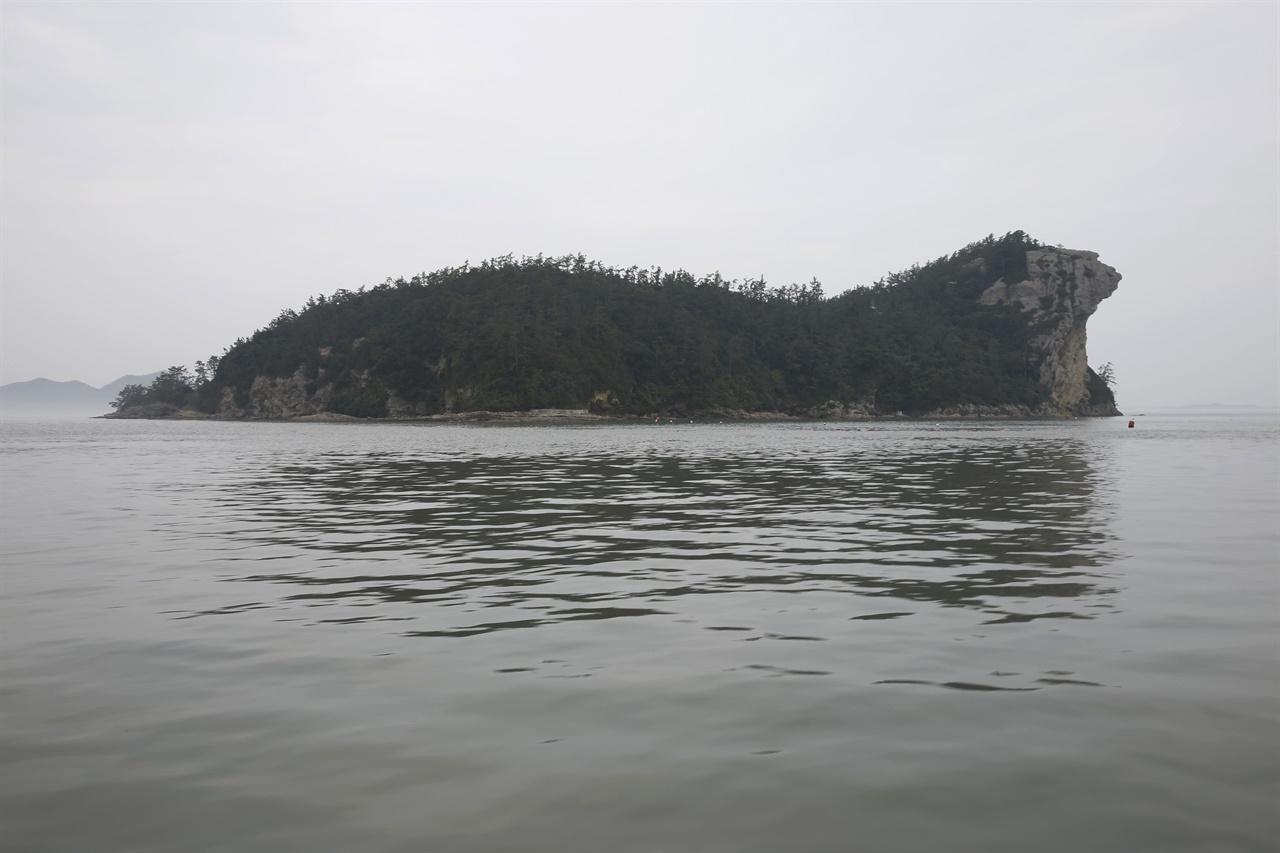진도 가사군도에 속하는 섬 가운데 하나인 광대도. 사자를 닮았다고 사자섬, 물개를 닮았다고 물개섬으로도 불린다.