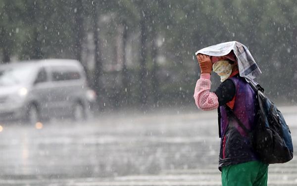 25일 오후 소나기가 내린 대구시 중구 동인동 종각네거리에서 신호를 기다리는 한 시민이 신문지로 비를 피하고 있다. 2016.7.25
