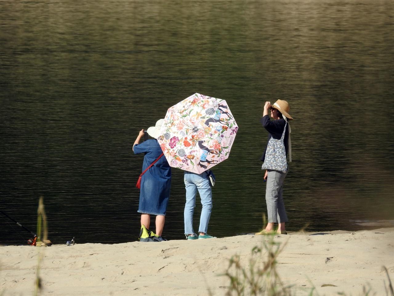 중년으로 보이는 여성들도 강변을 찾아 핸드폰으로 사진을 찍으면서 아름다운 자연을 감상했습니다.