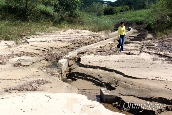 낙동강 합천창녕보 좌안에 있는 '어도'에 물은 흐르지 않고 모래와 갈대가 쌓여 있다.