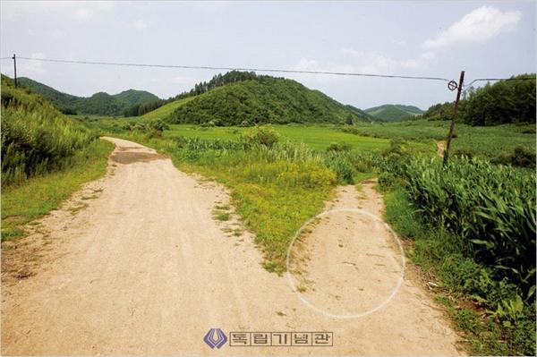 양세봉 장군 순국 장소. 랴오닝성 신빈현 향수하자 소황구촌으로 내려가는 길 오른쪽 옥수수밭. (표시 지점)(2011)