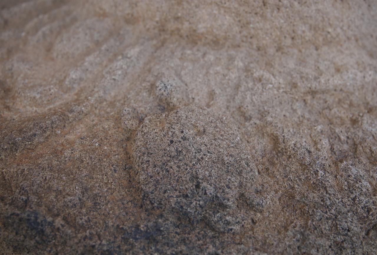 미황사 대웅보전 주춧돌에 새겨진 거북이 석조물. 미황사 창건설화와 관련된 것으로 추정하고 있다.