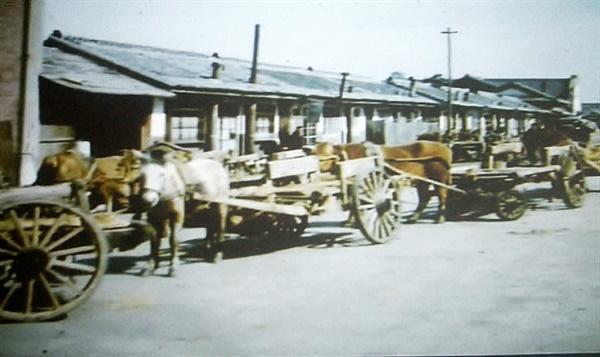 장미동 피난민촌 모습(1950년대)