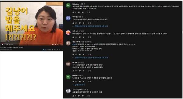 캣맘 활동을 소개하는 유튜브에 달린 욕설과 비방 댓글