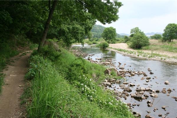대전 월평공원의 모습.