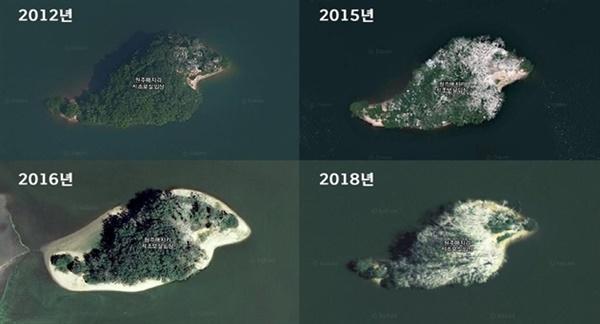▲ 민물가마우지 서식으로 인해 흥업저수지 거북섬이 훼손된 모습.