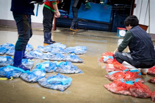 옹진수협공판장의 해산물 조합원들이 차량으로 싣고 온 해산물에 표기를 하고 있다.