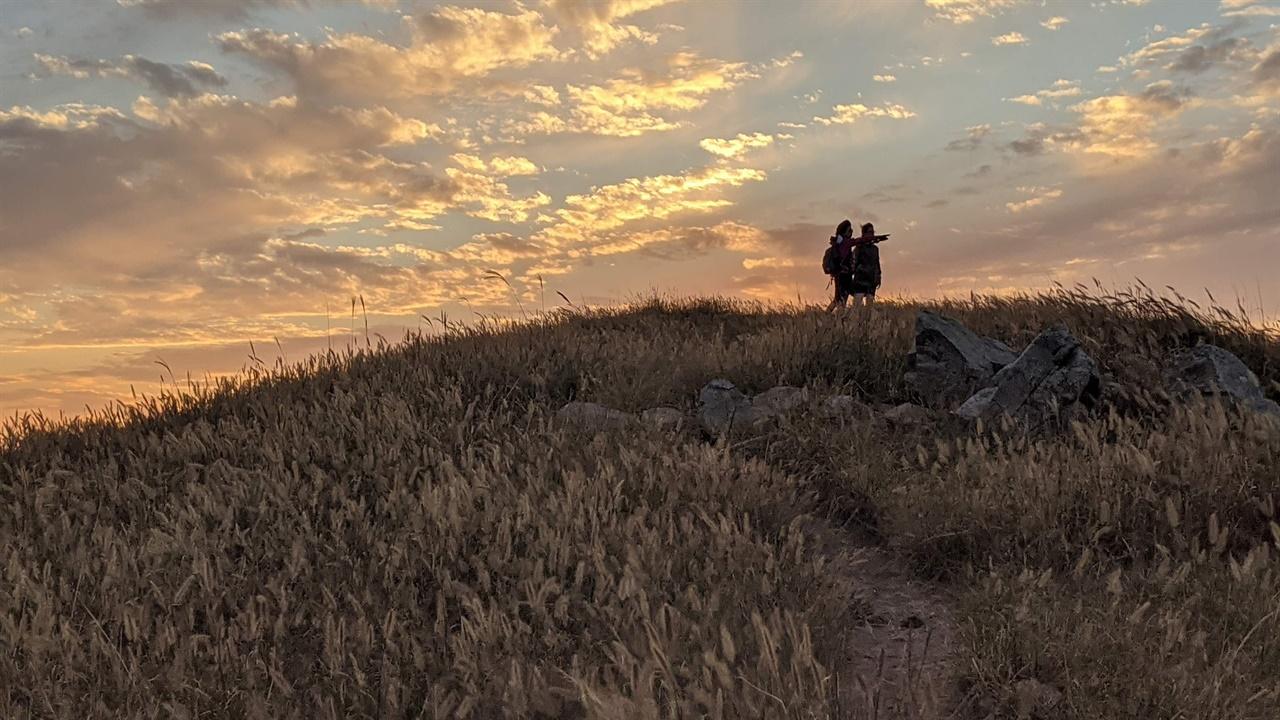 개머리초원의 수크령 굴업도에 가을이 오면 개머리초원의 수크령이 노을빛 아래에서 넘실거린다