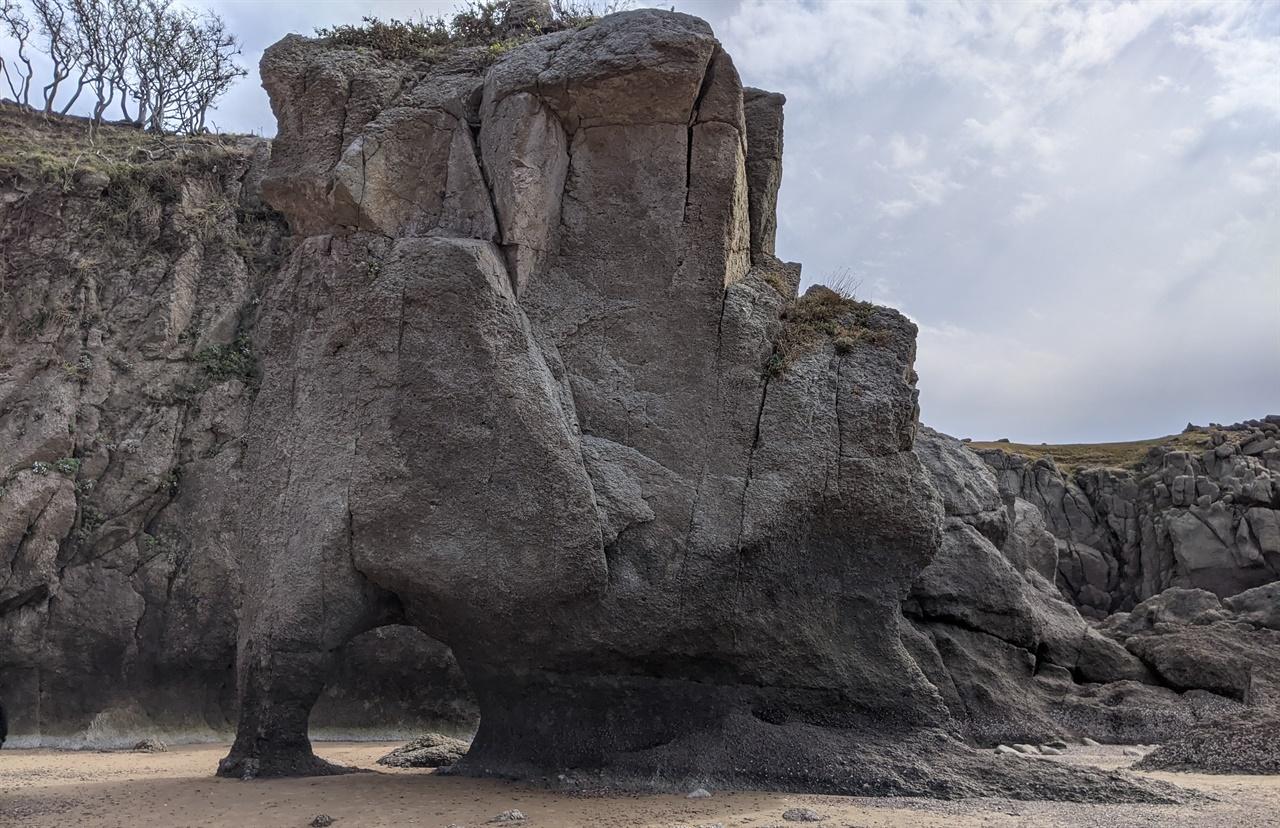연평산으로 가는 길목에서 만나는 코끼리바위 운이 좋아 썰물 때를 만나면 연평산 길목에서 코끼리바위를 만날 수 있다