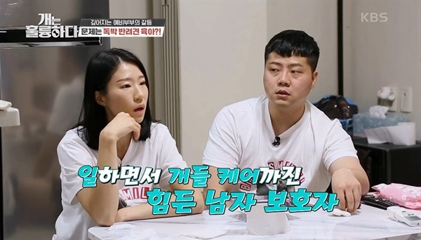 KBS2 <개는 훌륭하다> 관련 이미지.