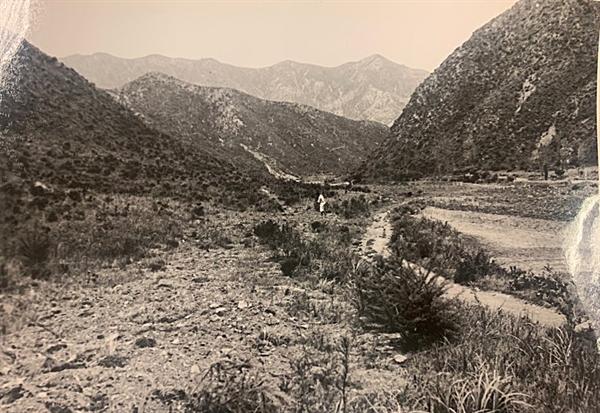 [발굴 사진] 골짜기 봉우리 모양과 산세를 보면 지금의 대전 동구 낭월동 골령골의 모습과 동일하다. <오마이뉴스>가 골령골 1학살지와 2학살지로 이름 붙인 곳이 대부분 화면에 들어 있다. 멀리 대전 산내초등학교 방향으로 강바위산(382m)이 보인다. 1950년 7월 또는 8월, 대전을 점령한 북한군과 함께 골령골 현장을 방문한 영국 <데일리 워커>의 앨런 위닝턴 기자가 찍었다.