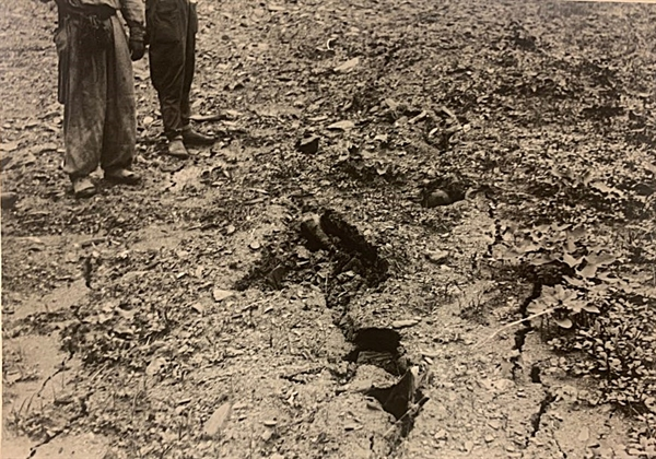 시체가 부패하면서 구덩이가 움푹 꺼져 땅이 갈라져 있는 모습으로 보인다.1950년 7월 또는 8월, 대전을 점령한 북한군과 함께 골령골 현장을 방문한 영국 <데일리 워커>의 앨런 위닝턴 기자가 찍었다.