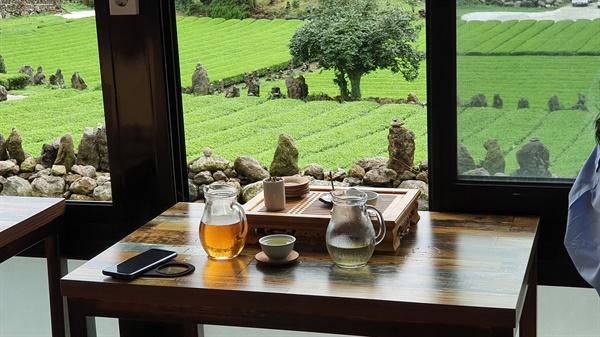 서귀다원의 다실. 포근한 실내에서 녹차밭을 보면서 녹차를 즐길 수 있다.