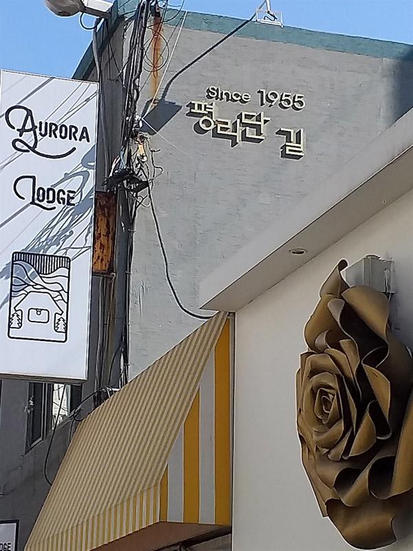 인천 부평의 새로운 명소 평리단 길  다 죽어가던 쇠락한 시장 뒷골목이 청년 창업자들이 몰리면서 되살아나고 있다.